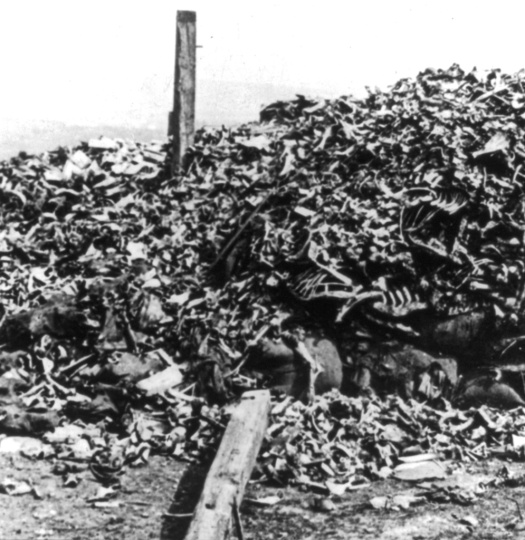 Human remains from combat at Verdun during WWI